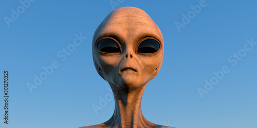 Fotografie, Obraz Grey Alien extremely detailed and realistic high resolution 3d illustration of a