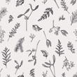 Seamless pattern with leaves, seeds, conifers.