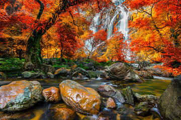 Fototapeta Krajobraz Amazing in nature, beautiful waterfall at colorful autumn forest in fall season