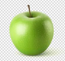 Pomme Vectorielle 3