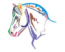 Colorful Vector Horse Portrait 2