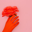 canvas print picture Fake hand and  roses. Minimal art. Valentine's Day concept