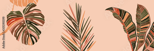 Fototapeta Tropical Palm Leaves in a minimalist trendy style. Silhouette of a plant banana, monstera and Dypsis in a contemporary simple abstract style on pink background. Vector illustration collage. obraz