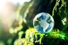 Renewable Energy And Sustainab...