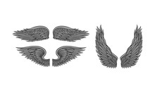 Three Pairs Of Wings In Tattoo...