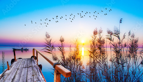 Fotomural viejo embarcadero de madera en el lago