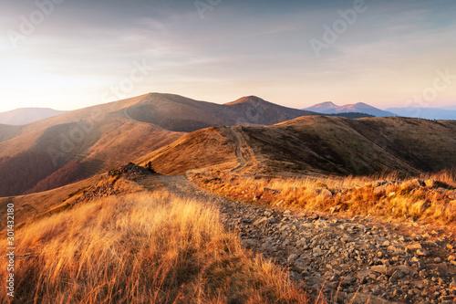 Foto auf Gartenposter Schokobraun Yellow grass trembling in the wind in autumn mountains at sunrise. Carpathian mountains, Ukraine. Landscape photography