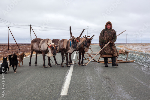Foto auf AluDibond Grau The extreme north, Yamal, reindeer in Tundra , open area, assistant reindeer breeder, the men in national clothes