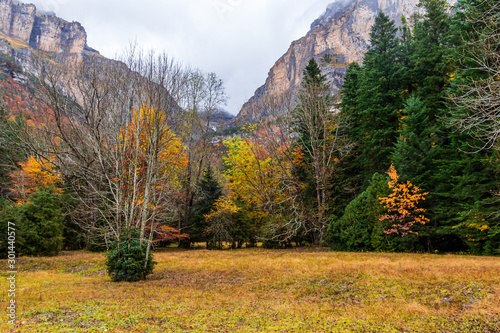 Fototapety, obrazy: Autumn fall in Ordesa National Park