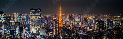 Night view of TOKYO JAPAN Wallpaper Mural