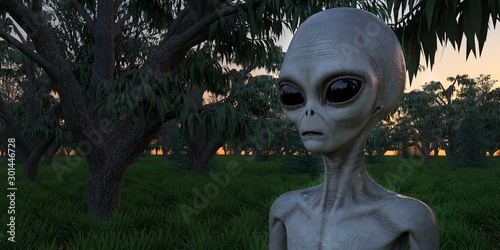 Photo Alien Grey Humanoid Extraterrestrial Being in a forest extremely detailed and re