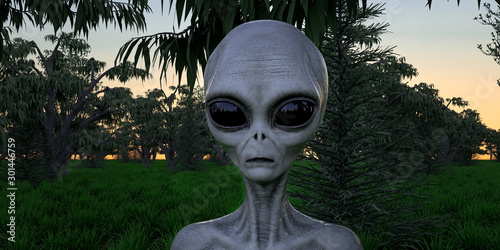 Canvas Print Alien Grey Humanoid Extraterrestrial Being in a forest extremely detailed and re