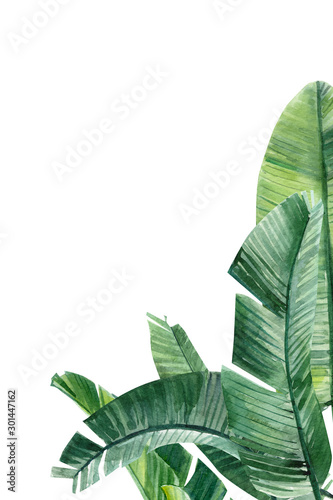 Photo card with place for text, palm tree on an isolated white background, watercolor