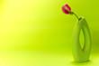 Leinwandbild Motiv purple calla flower in a vase on a light green background