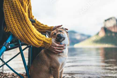 Valokuva tourist friend girl together tender dog closed eyes on background mountain, fema