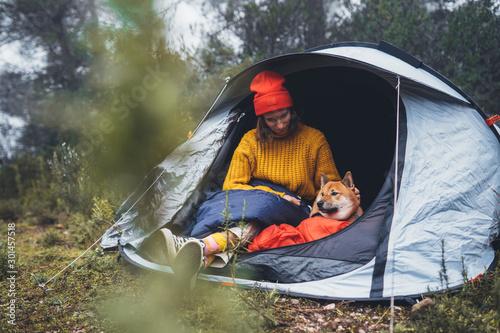 Fototapeta tourist traveler hugging relaxation red shiba inu in camp tent on background fog