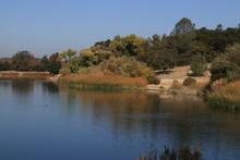 Fall At Atascadero Lake