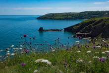 Beautiful Brixham Landscape From Berry Head Brixham Devon Looking Out To Sea