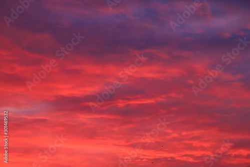 Fond de hotte en verre imprimé Corail Beautiful red, pink feather clouds against the sky in sunrise in the morning. Picturesque magic background. Mystical clouds. Landscape background for poster.
