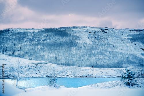 Fototapety, obrazy: Winter Wonder Land