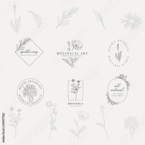 Fotografie, Tablou Set of 6 botanical logos