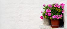 Geraniums In A Flower Pot Standing In A Wall Recess
