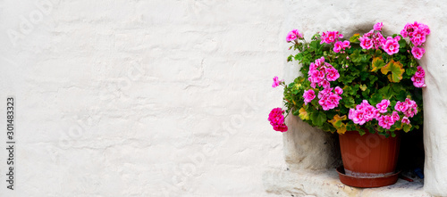 Photo Geraniums in a flower pot standing in a wall recess