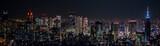 東京都市風景 新宿の夜景 Night view of Shinjuku Japan