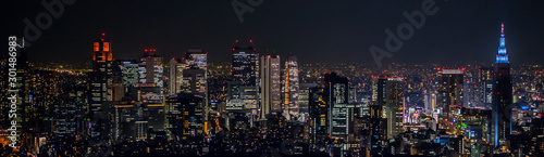 東京都市風景 新宿の夜景 Night view of Shinjuku Japan Wallpaper Mural