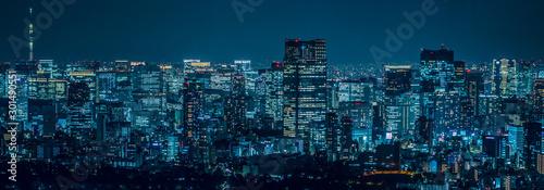 Tokyo city at night Canvas Print