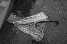 折れた傘 捨てられた...