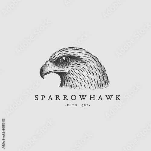 Photo Vintage hawk label