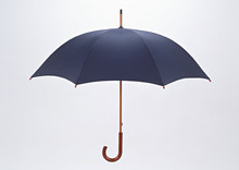 Black Umbrella Isolated On Whi...