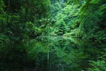 Hidden Beautiful Nature Spot, Ishikawa, Japan