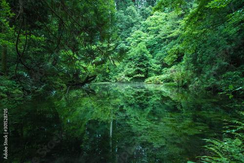 Ukryte piękne miejsce natury, Ishikawa, Japonia