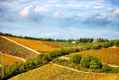 Fotomural  Chianti region landscape in autumn, Tuscany, Italy