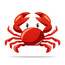 Crab Seafood Vector Isolated I...