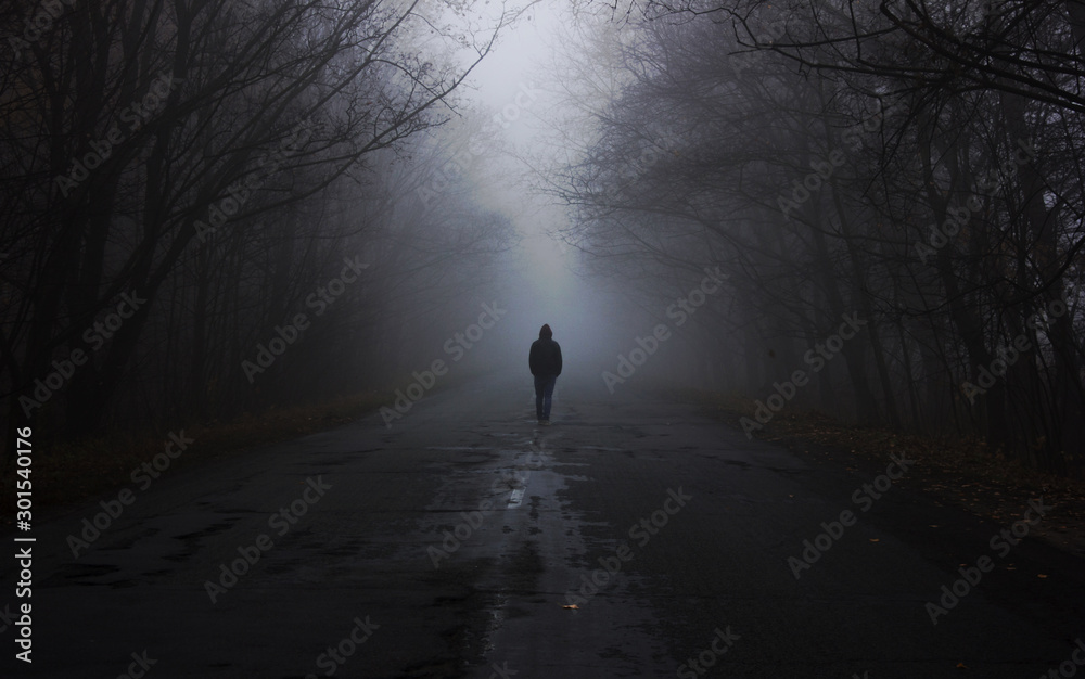 Fototapety, obrazy: Forest in fog. the man is walking by the fog. Dark foggy forest with magic atmosphere