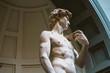 canvas print picture - Michelangelo's David sculpture