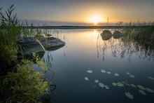 Estonian Forest Swamp Lake At ...