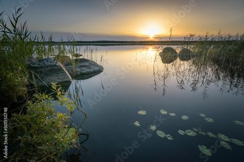 Fotografía Estonian forest swamp lake at sunset with beatiful still water