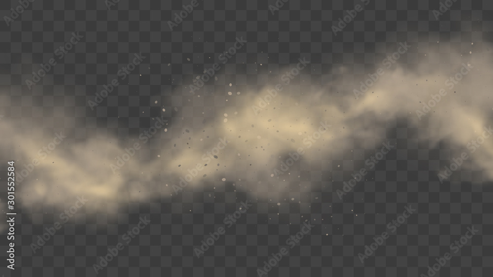 Fototapeta White or gray smoke, realistic mist or dust motion, cloud on transparent background or fog in light. Cigarette or spray effect. Spooky steam or vapor. Space nebula or atmosphere. Pollution and exhaust