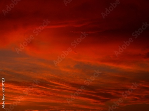 Foto auf AluDibond Violett rot An orange evening sky with clouds