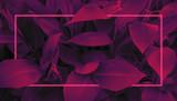 Fototapeta Kwiaty - Futuristic background in retro style 80s, neon glow, tropical leaves in ultraviolet color