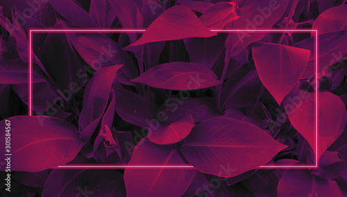 Futuristic background in retro style 80s, neon glow, tropical leaves in ultraviolet color - 301584567