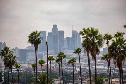 Poster Los Angeles View of Los Angeles, CA with palm trees and moody sky