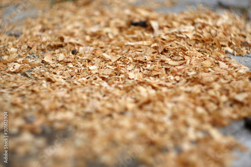 Valokuvatapetti Close up saw dust. Wooden industry. Sawmill