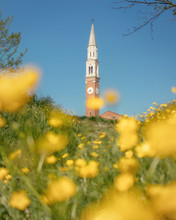Church On Blue Sky Background And Yellow Flowers In Front