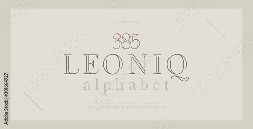 Elegant alphabet letters serif font and number Wallpaper Mural