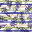 Tropical new zealand fern frond and bracken grass